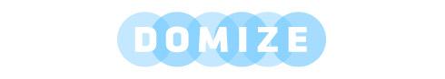 Domize Logo